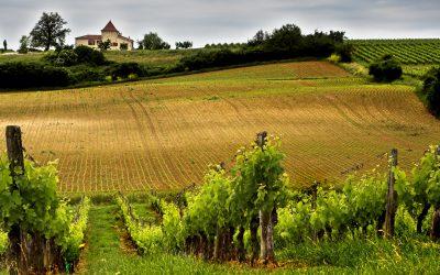 Foire aux vins de Bordeaux septembre 2016 à Ouistreham
